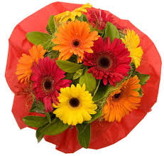 21 gerberas bouquet