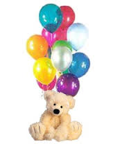 1 feet teddy with 12 air filled balloons