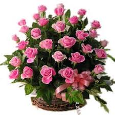44 Pink roses in a basket