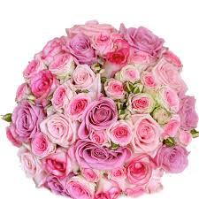 75 shades of pink roses bouquet