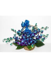 15 blue orchids basket