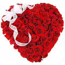 36 red roses heart