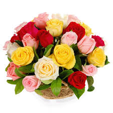 50 mix roses flowers basket